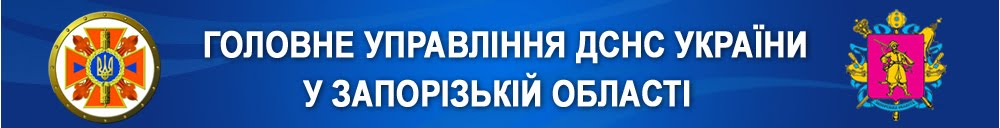 http://www.zp.mns.gov.ua/